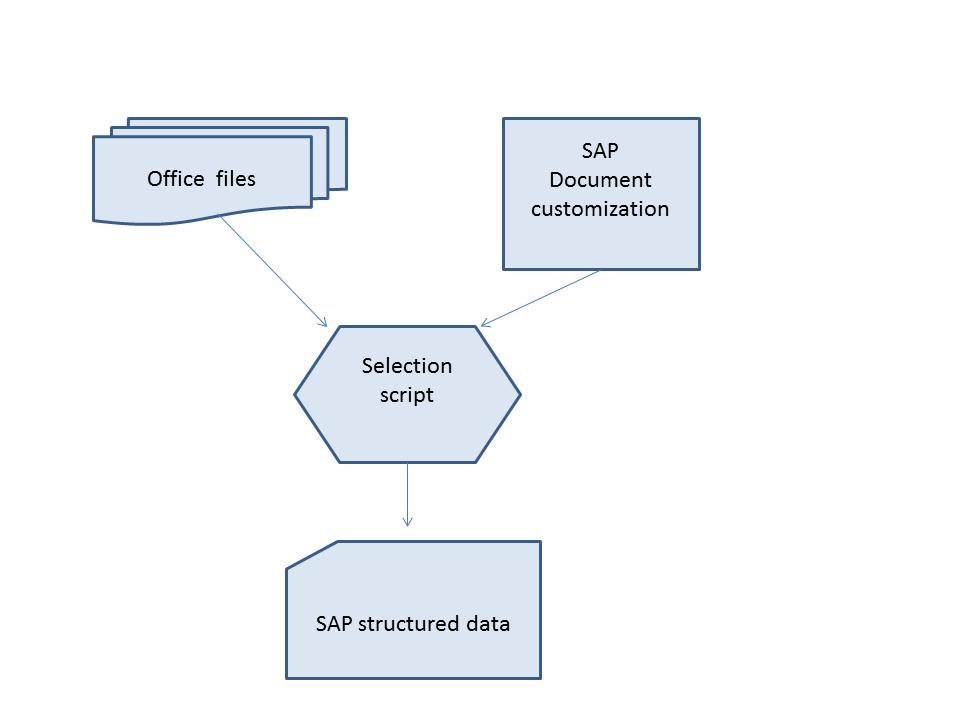 sap microsoft office